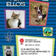 Eclipse Editorial ayudando a los animales